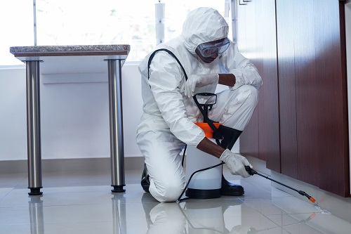 dezinfectie nebulizare, servicii dezinfectie